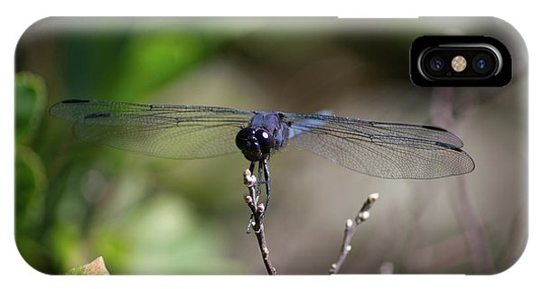 IPhone Case featuring the photograph Maine Dragonfly by Kirkodd Photography Of New England