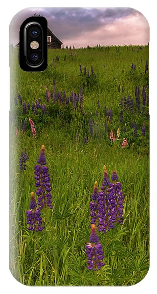Maine Lupines And Home After Rain And Storm IPhone Case
