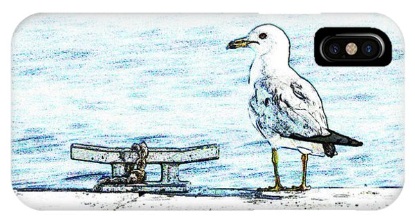 Maine Seagull IPhone Case