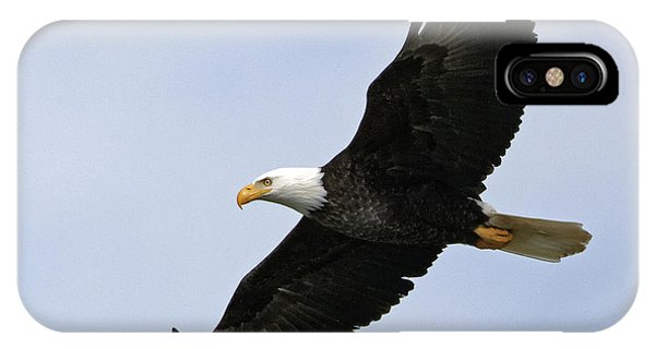 Majestic Bald Eagle IPhone Case