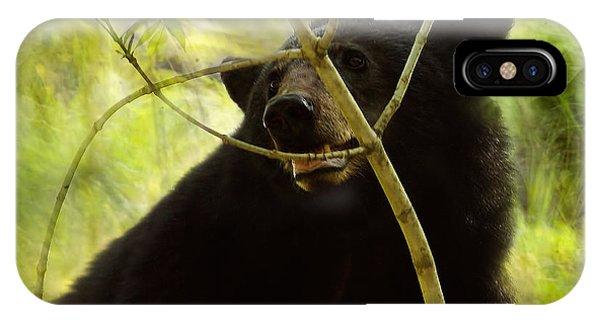 Majestic Black Bear IPhone Case