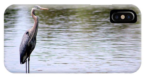 Majestic Great Blue Heron IPhone Case