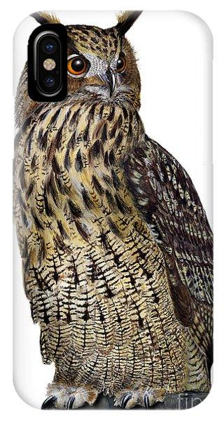 Majestic Eurasian Northern Eagle Owl Bubo Bubo - Hibou Grand-duc - Buho Real - Nationalpark Eifel IPhone Case
