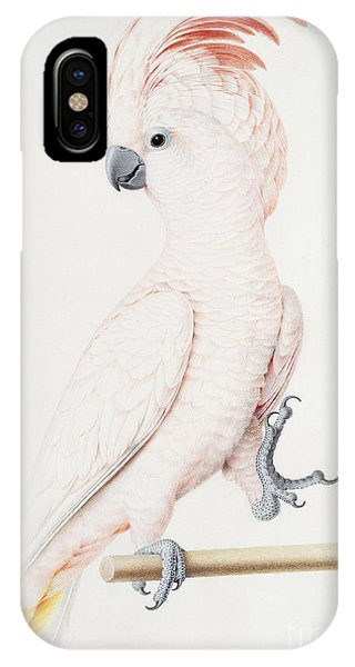 Major Mitchell's Cockatoo IPhone Case