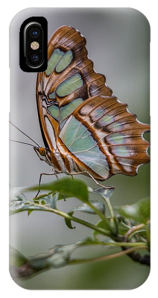 Malachite Butterfly Profile IPhone Case