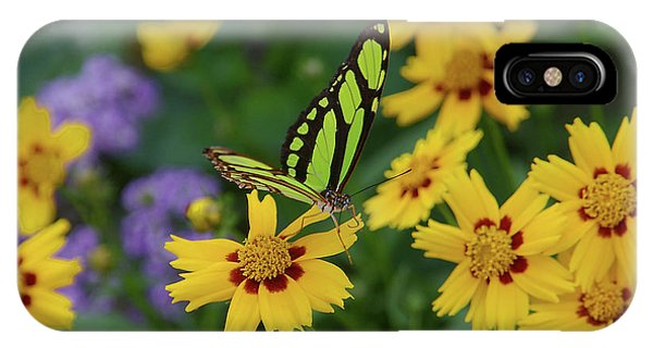 Malachite Butterfly IPhone Case