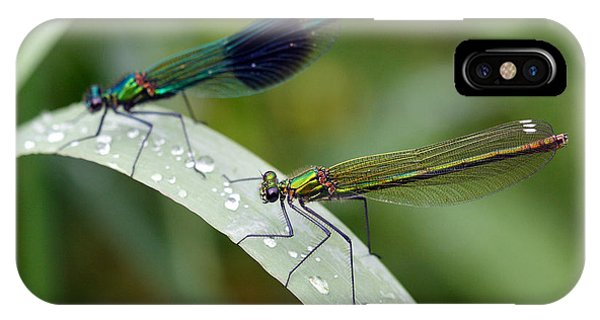 Male And Female Damsel Fly Phone Case by Pierre Leclerc Photography