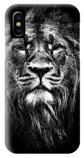 Male Asiatic Lion IPhone Case