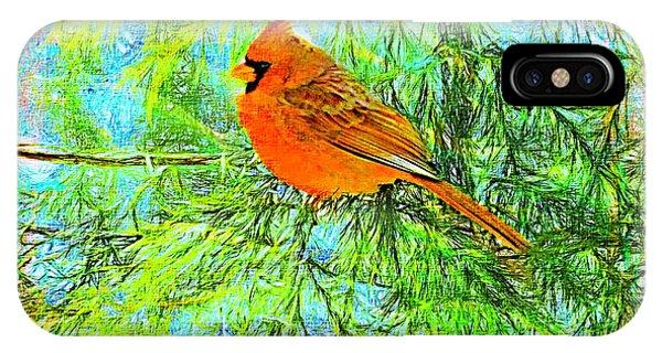 Male Cardinal In Juniper Tree IPhone Case