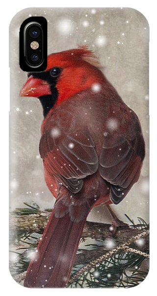 Male Cardinal In Snow #1 IPhone Case