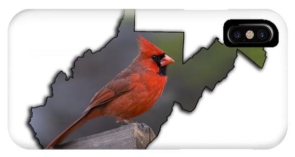 Male Cardinal Perched On Rail IPhone Case