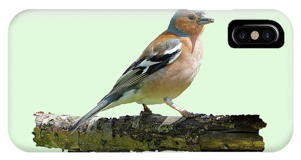Male Chaffinch, Green Background IPhone Case