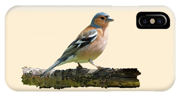 Male Chaffinch, Transparent Background IPhone Case
