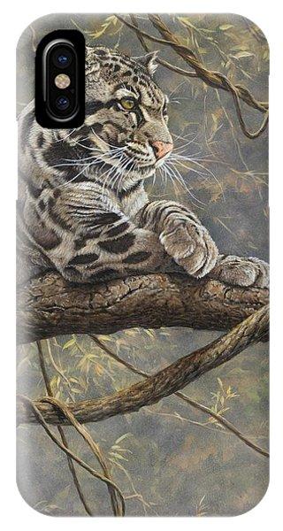 Male Clouded Leopard IPhone Case