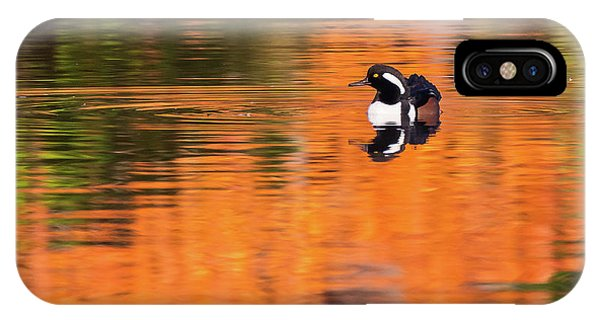 Male Hooded Merganser In Autumn IPhone Case