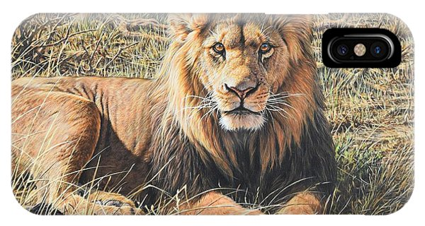 IPhone Case featuring the painting Male Lion Portrait by Alan M Hunt