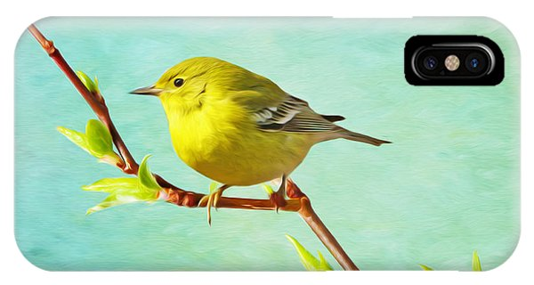 Male Pine Warbler On Forsythia Branch IPhone Case