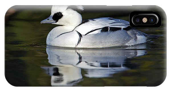 Male Smew IPhone Case