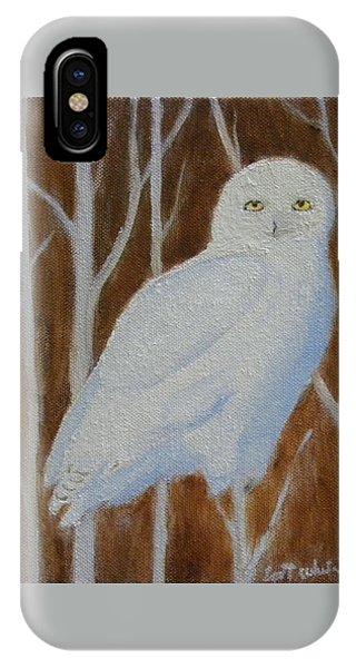Male Snowy Owl Portrait IPhone Case