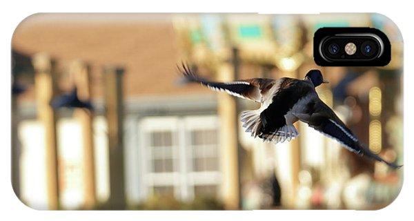 Mallard Duck And Carousel IPhone Case