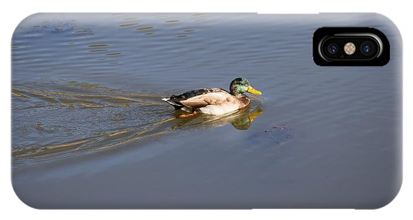 IPhone Case featuring the photograph Mallard Duck Burgess Res Co by Margarethe Binkley