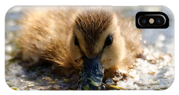IPhone Case featuring the photograph Mallard Duckling by Sue Harper