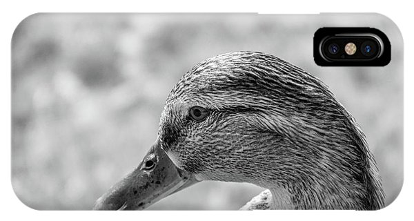 Mallard In Monochrome IPhone Case