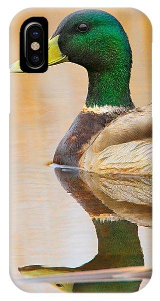 Mallard Mirror IPhone Case