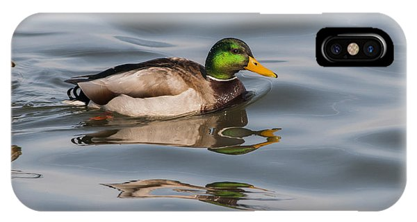 Mallards And Reflection IPhone Case