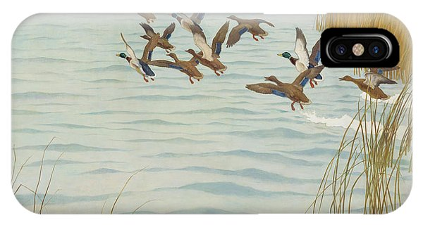Mallard iPhone Case - Mallards In Autumn by Newell Convers Wyeth