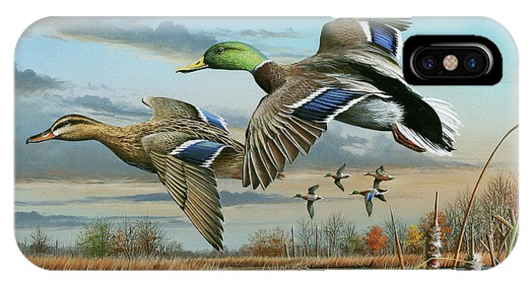 Mallards In Flight IPhone Case
