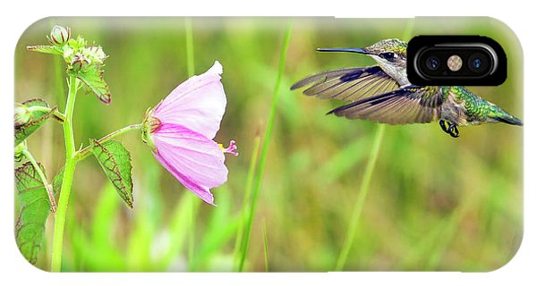 Mallow Hummer IPhone Case
