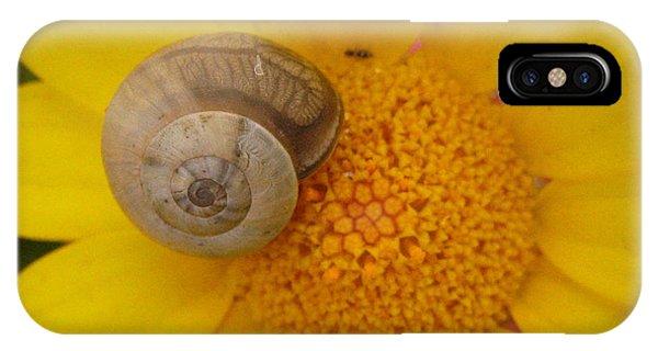 Malta Flower IPhone Case