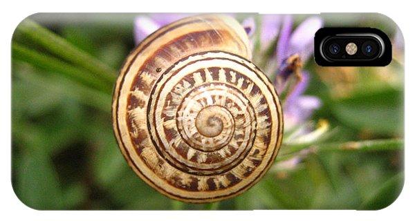 Malta Snail IPhone Case
