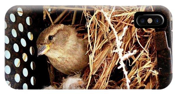 Mama Bird IPhone Case