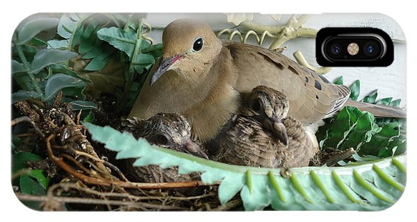 Mama Morning Dove IPhone Case