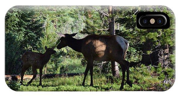 Elk Calf - Mother Rmnp Co IPhone Case