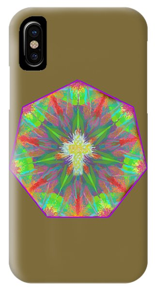 Mandala 1 1 2016 IPhone Case