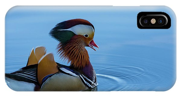 Majestic Mandarin Duck IPhone Case