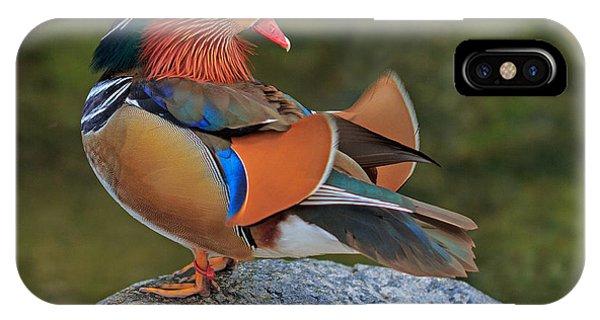 Mandarin IPhone Case
