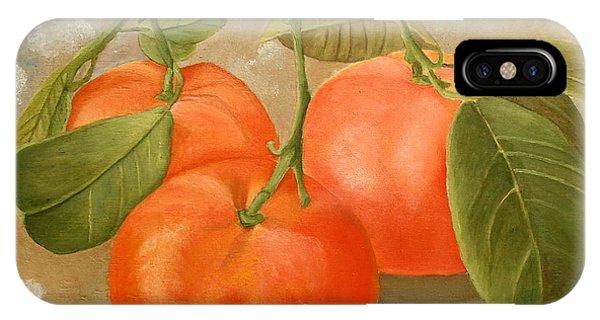 Mandarins IPhone Case