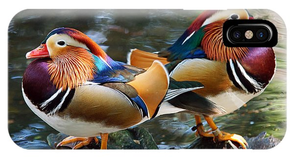 Mandarin Double Shot IPhone Case