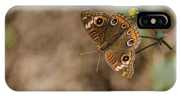 Mangrove Buckeye Butterfly IPhone Case