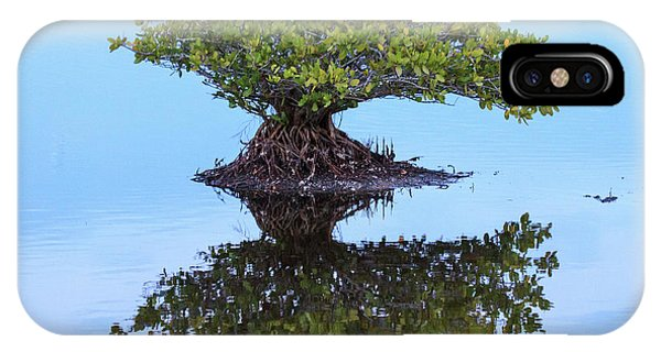 Mangrove Reflection IPhone Case