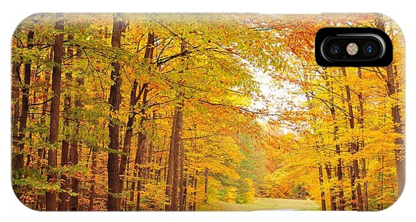 Manisee National Forest In Autumn IPhone Case