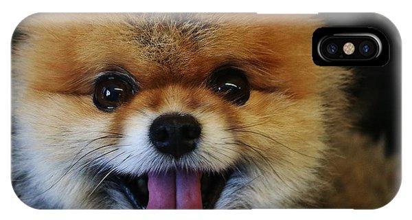 Pomeranian iPhone Case - Mans Best Friend by Christopher James