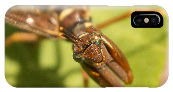 Mantid Fly IPhone Case