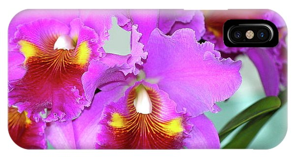 Many Purple Orchids IPhone Case