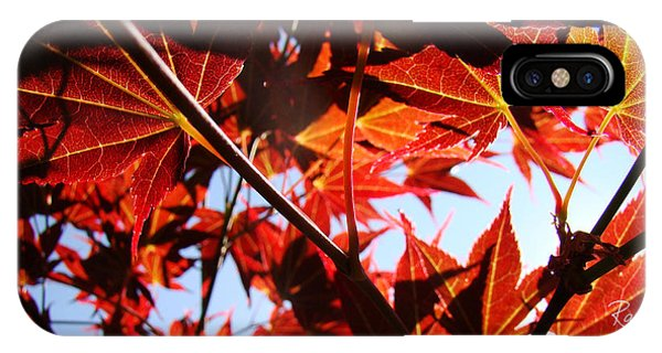 Maple Fire IPhone Case