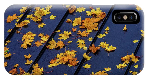 Maple Leaves On A Metal Roof IPhone Case